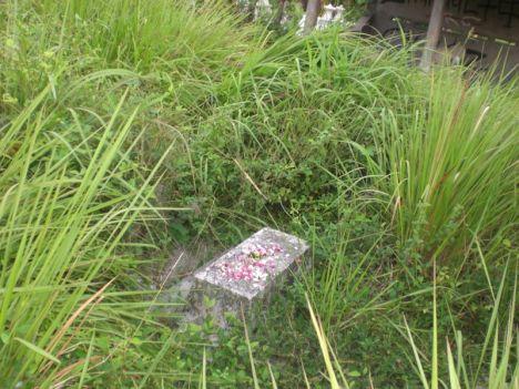 Kuburan Tak Terurus 3
