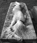 nisan telanjang