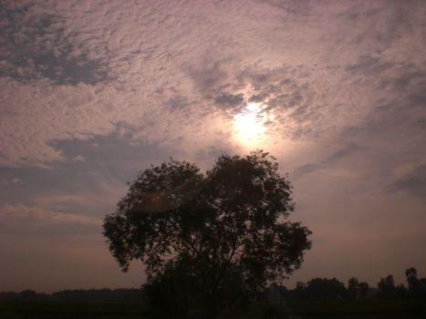 langit madura3
