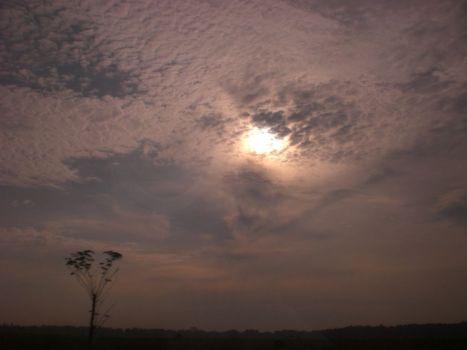 langit madura5