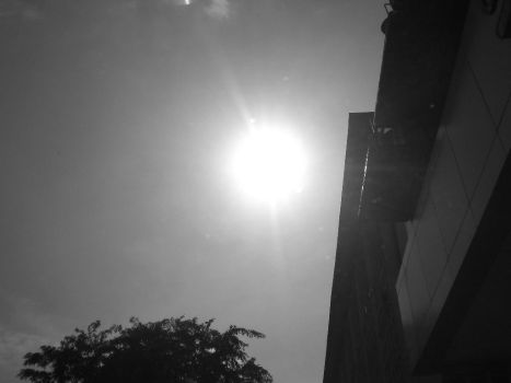 Mengintip Matahari Pagi