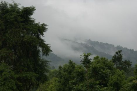 Kabut di Bukit Menoreh Dari Wisma Affandi
