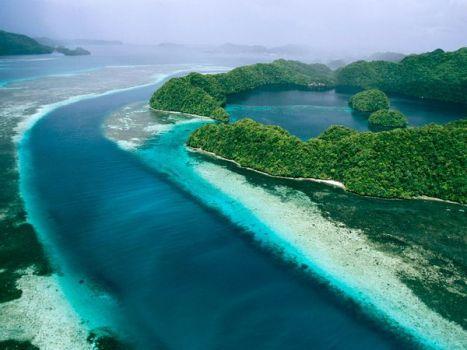 Palau | Foto: Tim Laman | Sumber: nationalgeographic.com