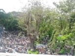 Jumatan di Masjid Cut Mutia 01
