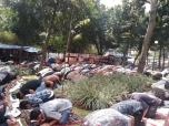 Jumatan di Masjid Cut Mutia 09